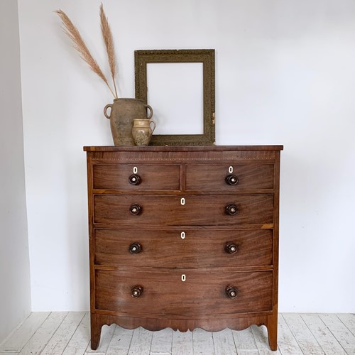 Tall Curved Front Veneered Chest of Drawers