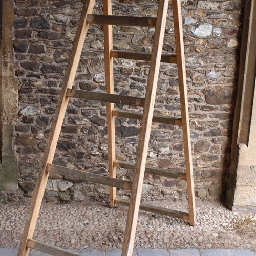 20th Century  decorators trestle ladder
