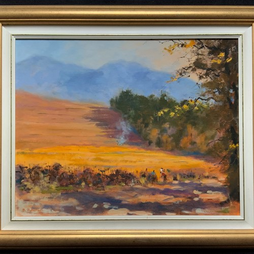 Original South African Landscape Oil Painting