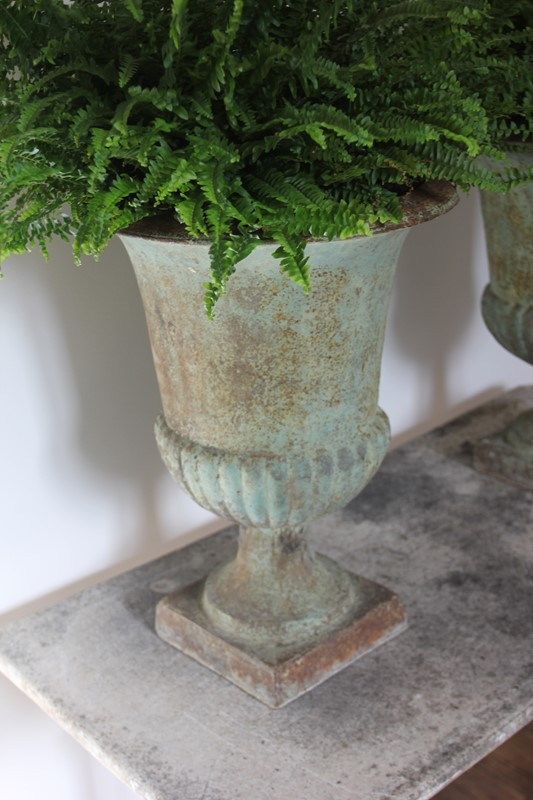19th century garden urns-aspire-antiques-img-1874-copy-main-636797991732324823.JPG