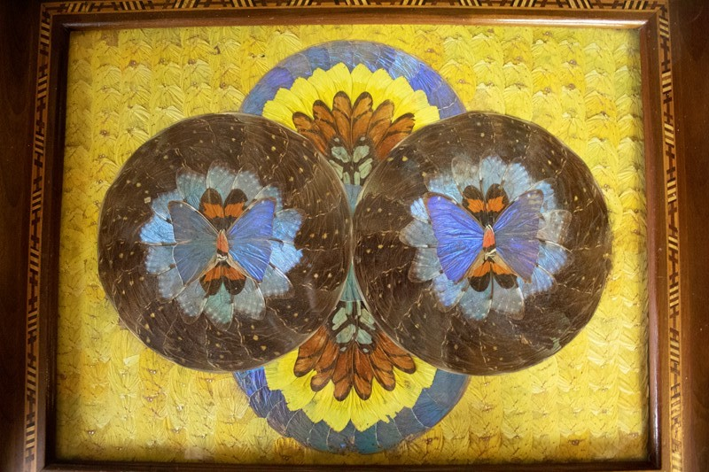 Glazed Tray with Butterflies-corvus-antiques-img-4058-main-637352651302453402.jpg