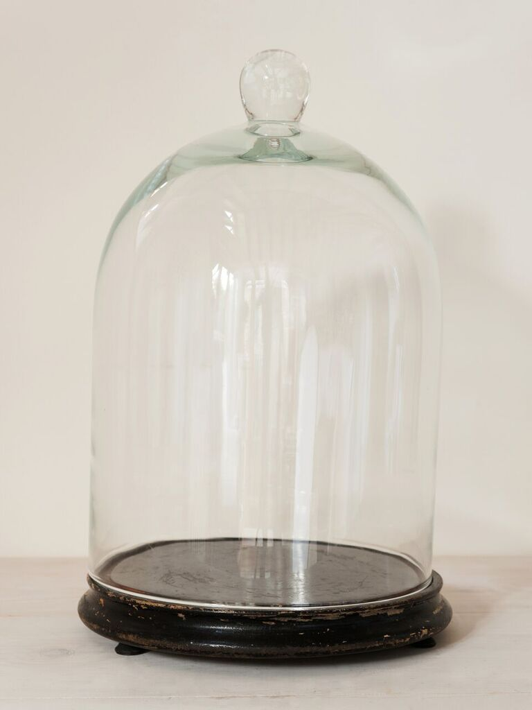 Collection Vintage Glass Cloches Domes