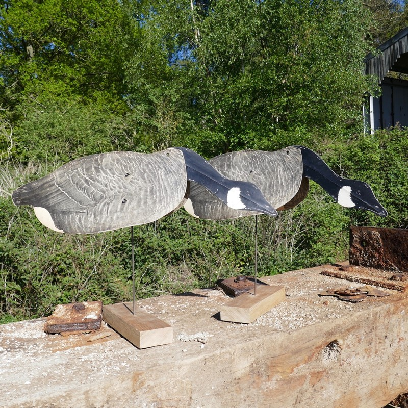 A Pair of Flying Geese Decoys on oak plinths-eco-editions-goose-31-main-637255033935586199.jpg