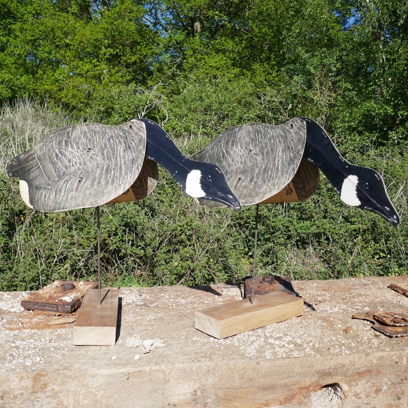A Pair of Flying Geese Decoys on oak plinths-eco-editions-goose-33-main-637255034707030677.jpg