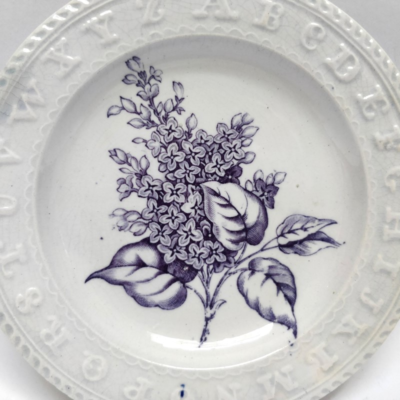 19thC childrens teaching plate with Lilac sprig-general-store-no-2-2-main-637012103010837005.jpg