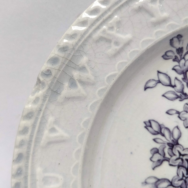 19thC childrens teaching plate with Lilac sprig-general-store-no-2-3-main-637012103123336650.jpg