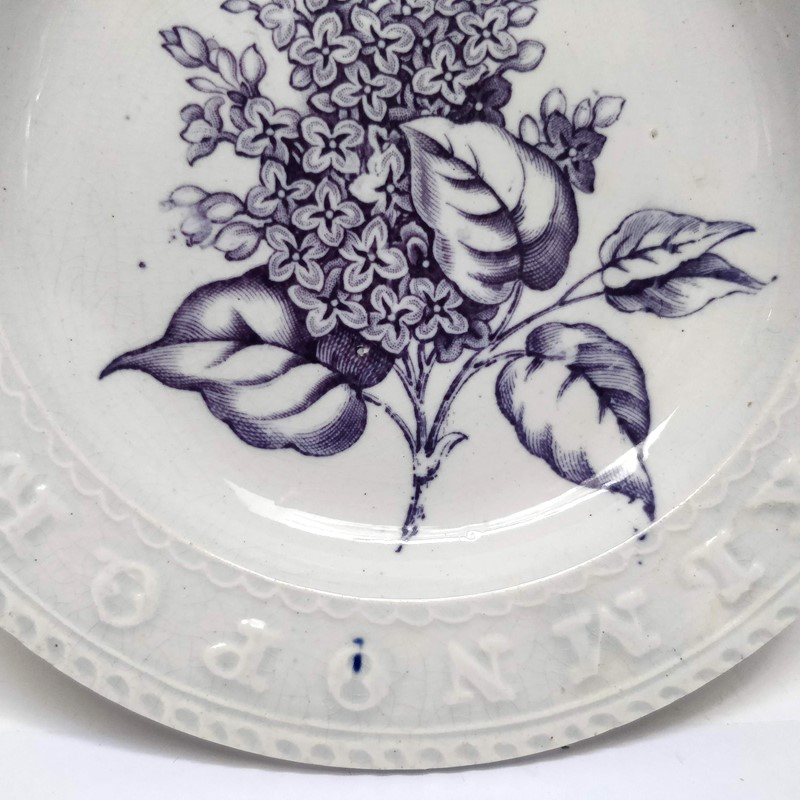 19thC childrens teaching plate with Lilac sprig-general-store-no-2-4-main-637012103225991749.jpg
