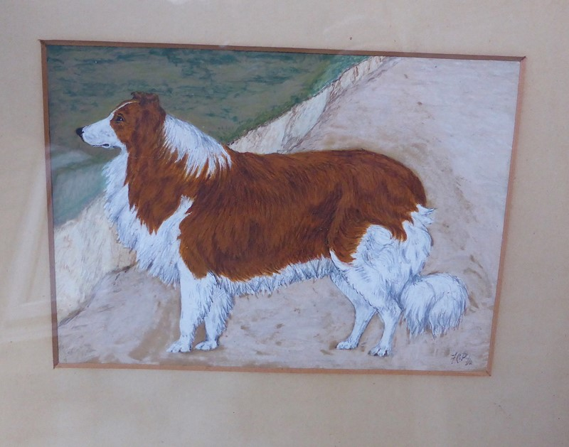 19th Century Painting of a Rough Collie Called Tip-ginger-tom-s-curious-eclectic-ce535b-hoarde-main-637382762412826365.JPG