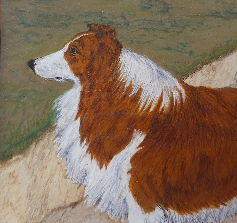 19th Century Painting of a Rough Collie Called Tip-ginger-tom-s-curious-eclectic-ce535g-hoarde-main-637382762194701843.JPG