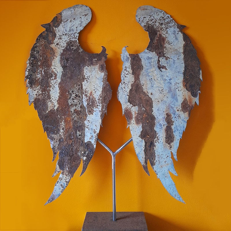 Angel Wings-hayles-angel-wings-001-main-637438087596787725.jpg