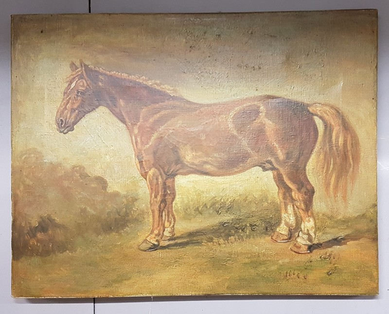 20thC Oil of canvas of a horse-heirlooms-by-lawrence-20180828_171024-main-636712996158494327.jpg