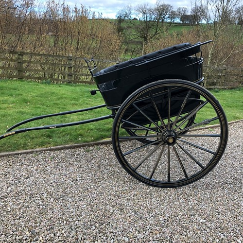 Governesses Trap / Carriage in Restored Condition