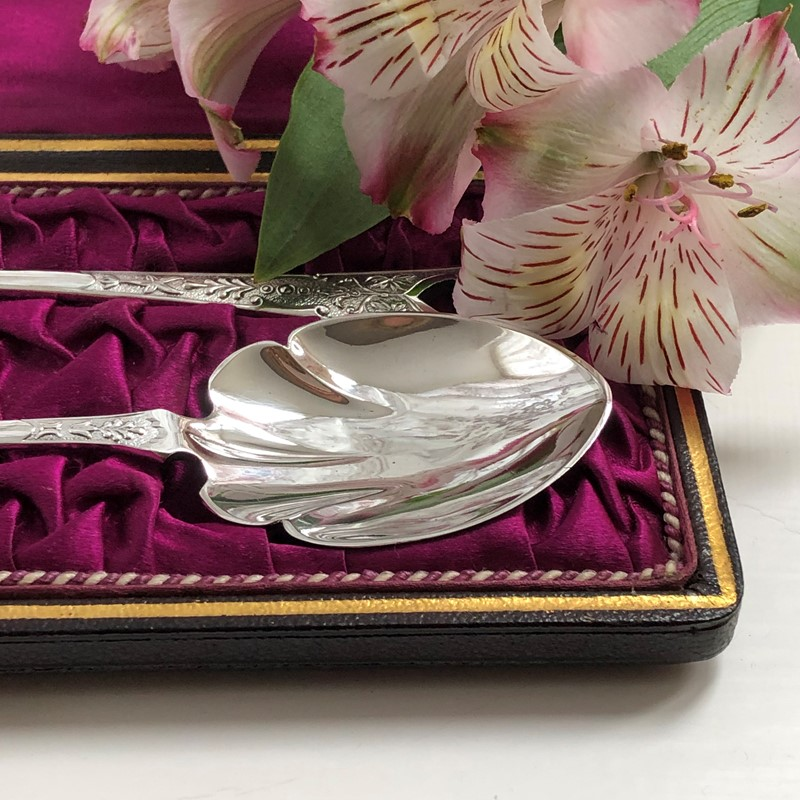 A Pair Of Silver Plated Jam Spoons Circa 1900-linda-jackson-antique-silver-lj0106-7-main-637426658065047309.jpg