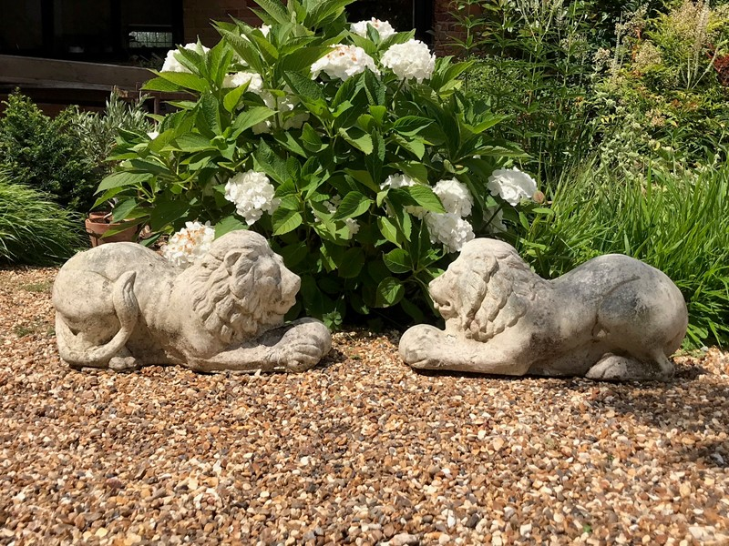 Pair of Recumbant Lions-louise-hall-decorative-img-4481-main-637100382154586242.jpg