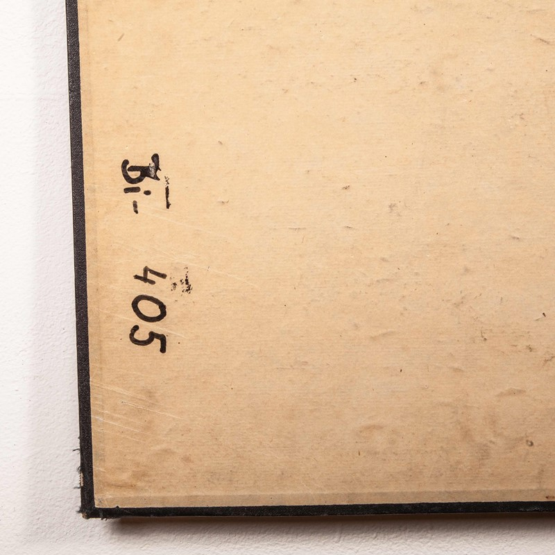 Early 20th Century Rigid  Botanical Chart-merchant-found-71225b-main-637123483238286830.jpg