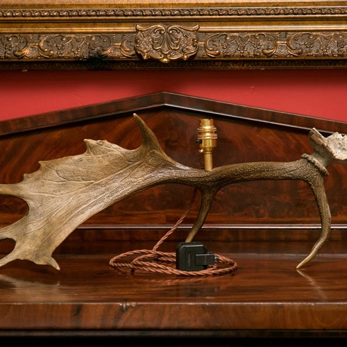 Beautiful genuine vintage deer antler lamp