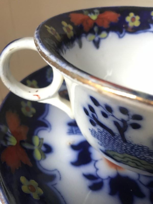 19th century  Royal Staffordshire cup & saucer-paroy-img-6703-main-637425893944163924.jpg