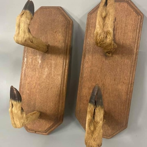 Pair of Taxidermy Hoofs Gun Rack