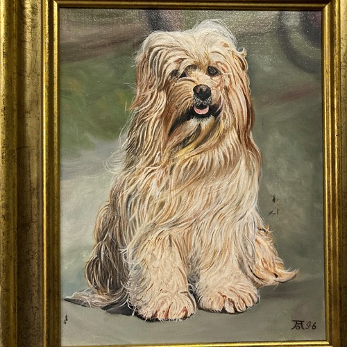 Oil on canvas bearded collie, contemporary