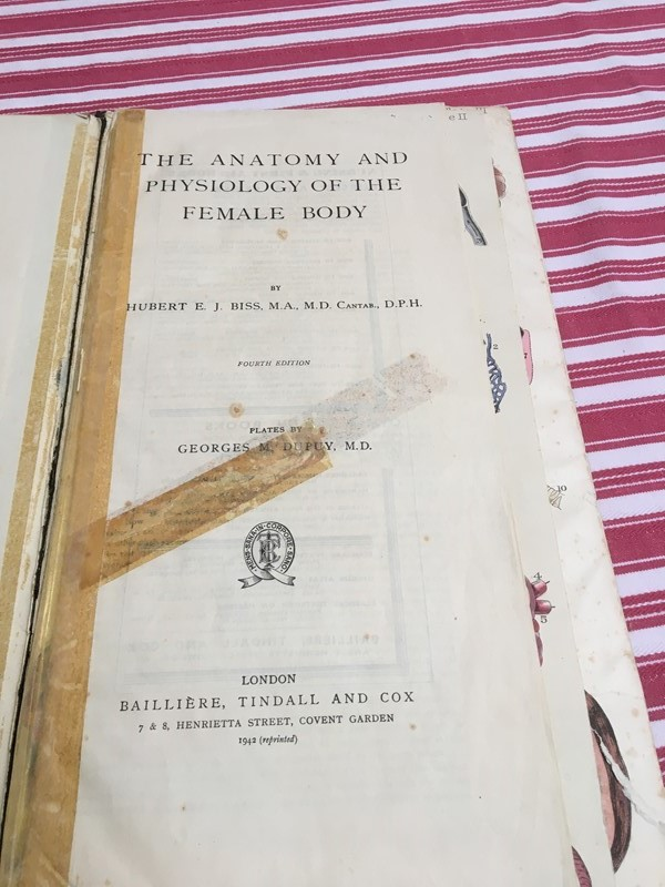 Anatomy of female body book - exceptional plates -sandie-lewis-antiques-and-interiors-02ccbd4f-1a0c-4adc-8150-d33f426536c3-main-637314572118782565.jpeg