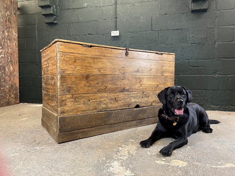 Salvaged XL Cattle Feed Bin. Circa 1850-the-board-residence-img-6503-main-637416540709303261.JPG