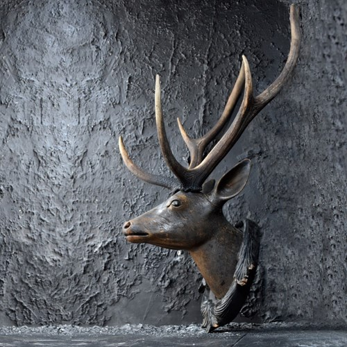 German Deer's Trophy Head