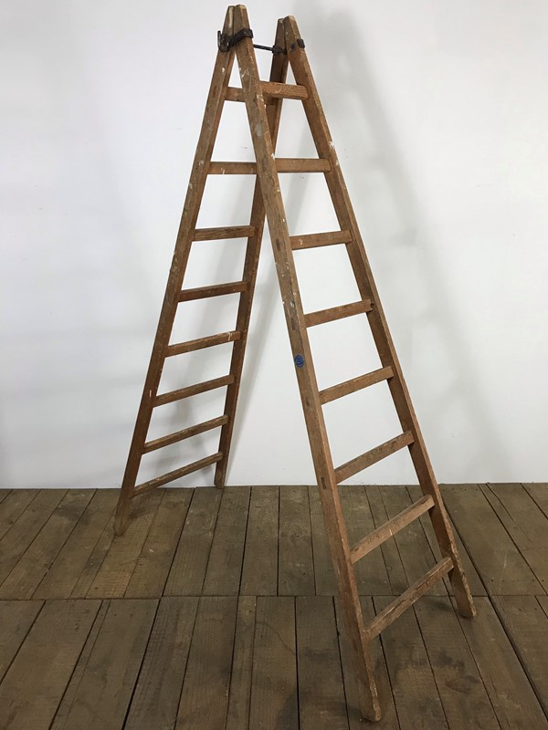Vintage Antique French Orchard Ladders -vintage-boathouse-3b67e891-8e01-47dd-9034-71c6b2ef1326-main-636983611805826042.jpeg