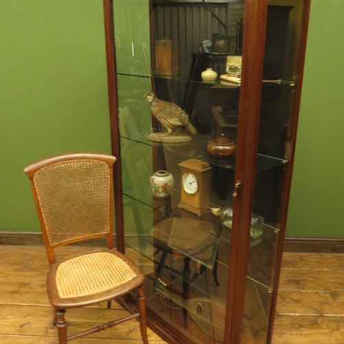 Tall antique glazed trophy cabinet