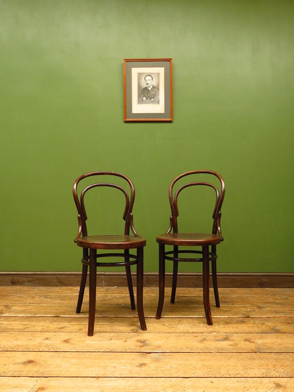 Antique bentwood chairs no14 by mundus & jj kohn-vintage-house-img-5082-main-637276414889822020.JPG