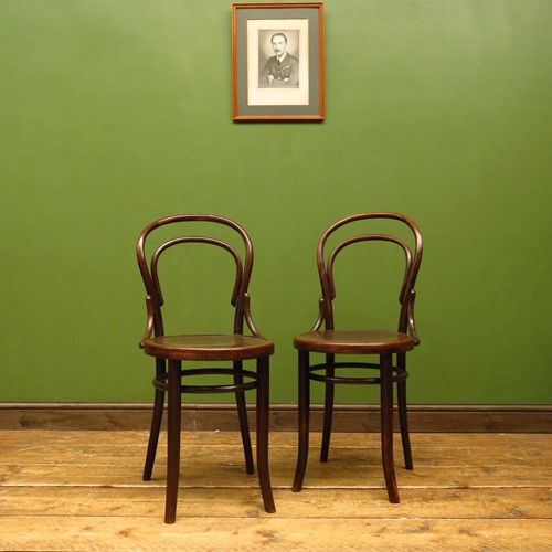 Antique bentwood chairs no14 by mundus & jj kohn