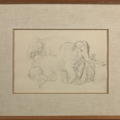 Three Studies of an Elephant, print of Rembrandt