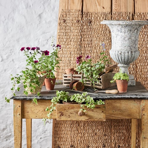 Alsace  Potting Table